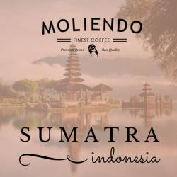 Moliendo Indonesia Sumatra Regional Coffee