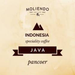 Moliendo Indonesia Java Pancoer Regional Coffee