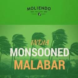 Moliendo India Monsooned Malabar Regional Coffee