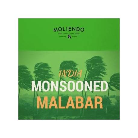 Moliendo India Monsooned Malabar Regional Coffee