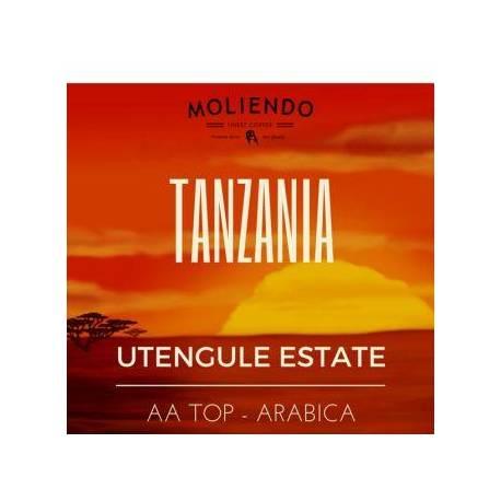 Moliendo Tanzania Utengule AA Regional Coffee