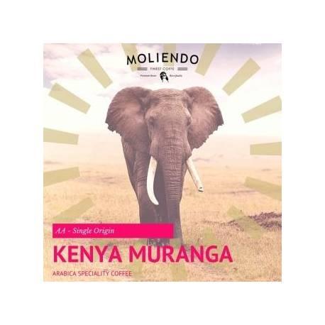 Moliendo Kenya AA Muranga Regional Coffee