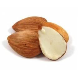 Malatya Apricot Kernels Seeds